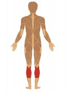 Ømhed-i-underbenets-muskler--intext_2